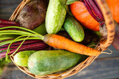 Fresh Organic Food Background Vegetables in the Basket Royalty Free Stock Images