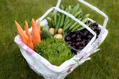 Fresh organic food Stock Image