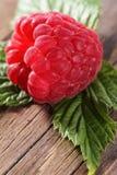 Fresh organic fruit - raspberry Stock Photo