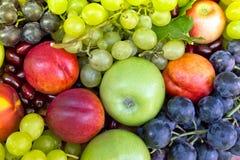 Fresh organic fruits Stock Photo