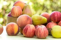 Fresh organic fruits Stock Images