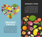 Fresh organic fruits berries healthy natural fresh food vector poster Royalty Free Stock Image