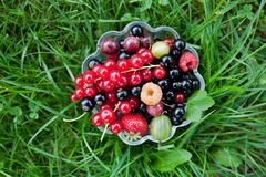 Fresh organic fruits in a glass bowl. On green grass royalty free stock images