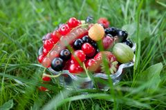 Fresh organic fruits in a glass bowl. On green grass stock photos