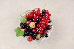 Fresh organic fruits in a glass bowl. On a stone background royalty free stock image