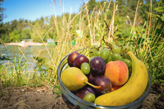 Fresh organic fruits on the plate. Sunny day. River bank royalty free stock images