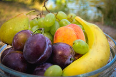 Fresh organic fruits on the plate. Sunny day. River bank stock photo