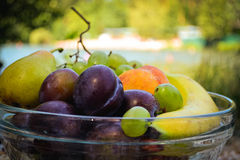 Fresh organic fruits on the plate. Sunny day. River bank stock image