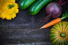 Fresh organic gardening vegetables Royalty Free Stock Photo