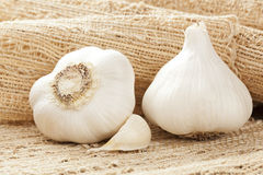 Fresh Organic Garlic Cloves. On a background Royalty Free Stock Image