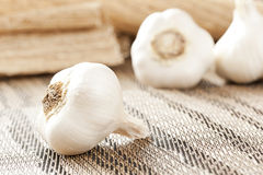 Fresh Organic Garlic Cloves. On a background Stock Photography