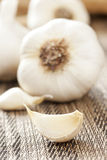 Fresh Organic Garlic Cloves. On a background Stock Photos