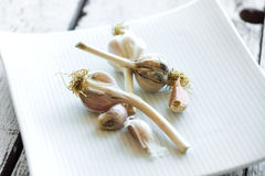 Fresh organic garlic on a wooden background Stock Images