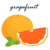 Fresh organic grapefruit sweet and sour tasty  Stock Images