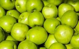 Fresh Organic Green Apple Royalty Free Stock Images