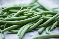 Fresh, organic green beans. Fresh picked organic, healthy green beans Stock Photos
