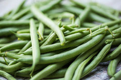 Fresh, organic green beans. Fresh picked organic, healthy green beans Royalty Free Stock Images