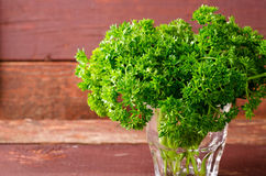 Fresh organic green curly parsley in a glass Stock Images