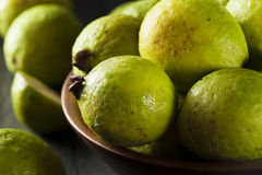 Fresh Organic Green Guava Stock Images