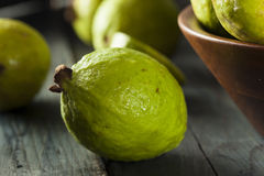Fresh Organic Green Guava Royalty Free Stock Images
