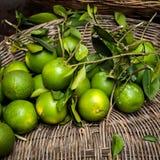 Fresh organic green orange fruits. In wicker basket at asian market Stock Photos