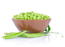 Fresh organic green pea with leaf in ceramics plate Royalty Free Stock Photo