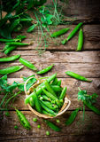 Fresh, organic green peas. Selective focus Royalty Free Stock Photo