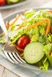Fresh Organic Green Salad Royalty Free Stock Photography