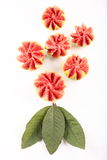 Fresh Organic guava slices,top view. royalty free stock photo