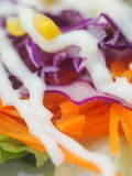 Fresh organic healthy lettuce leaf carrot corns and cabbage salad. Closeup of colourful fresh organic healthy lettuce leaf carrot corns and cabbage served with Stock Photography