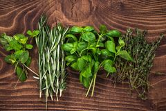 Fresh organic herbs collection on wooden table. Above aroma aromatic basil board bunch food garden green healthy ingredient kitchen leaf medicine minimal mint stock photos