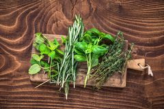 Fresh organic herbs collection on wooden table. Above aroma aromatic basil board bunch food garden green healthy ingredient kitchen leaf medicine minimal mint stock photography