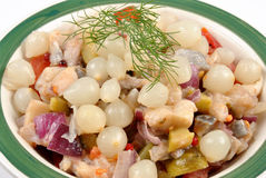 Fresh organic herring salad  in a bowl Royalty Free Stock Image