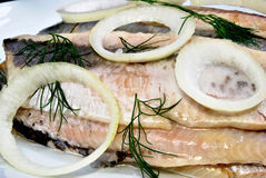 Fresh organic herring on a white plate royalty free stock photography