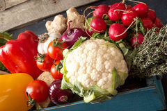 Fresh organic homegrown vegetables in blue wooden box Stock Images