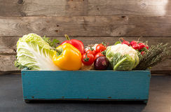 Fresh organic homegrown vegetables in blue wooden box Stock Photography