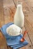 Fresh organic homemade cheese and milk. Stock Image