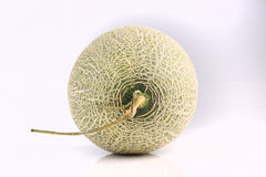 Fresh organic Japanese melon isolated on white background Royalty Free Stock Photos