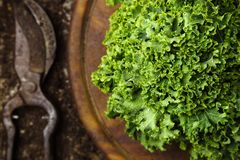 Fresh organic kale, old rustic wooden table. royalty free stock image