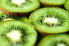 Fresh organic kiwi fruit sliced. Food frame with copy space for your text. Banner. Green kiwi circles background.  Stock Images