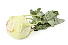 Fresh organic kohlrabi. Isolated on white Stock Image