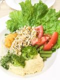 Veggie hummus sprout broccoli salad royalty free stock photo