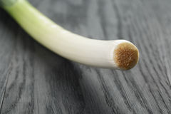 Fresh organic leek on vintage oak table. Closeup Royalty Free Stock Photos