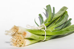 Fresh organic leeks. Tied with twine isolated on a white background Stock Photos
