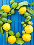 Fresh organic Lemons Royalty Free Stock Photos