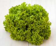 Fresh organic lettuce. Excellent salad ingredient Royalty Free Stock Photography