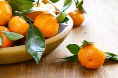 Fresh organic mandarins. With green leaves Stock Image