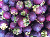 Fresh organic mangosteen. Royalty Free Stock Photography