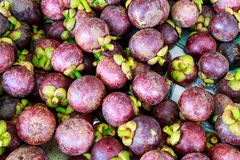 Fresh organic mangosteen Thai fruit in market Stock Photos