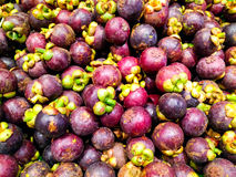Fresh organic mangosteen Thai fruit in market thailand Royalty Free Stock Image